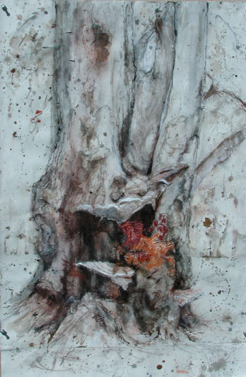 Blantyre Fungi, 1997, ink, pastel, charcoal on paper, 33 x 22 inches