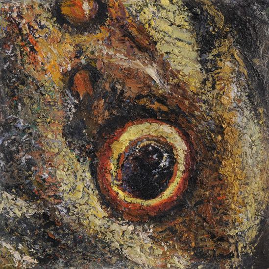 Calico Eye, 2009, oil on linen, 12 x 12 inches