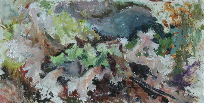 Lichen, 2000, oil on linen, 8 x 15 inches